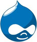 Why use Drupal for your website